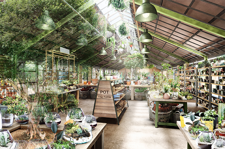 Garden Centre: 【サボテンだけじゃない!】大阪でおしゃれな多肉植物が
