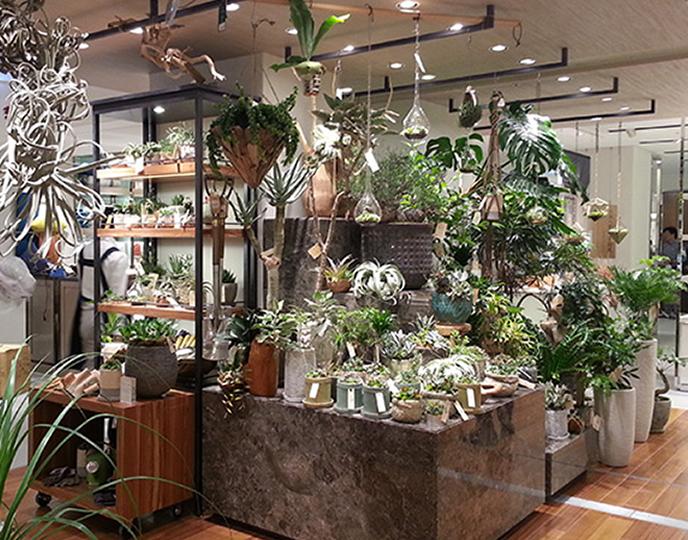 Garden Centre: 「the Farm UNIVERSAL OSAKA(ザ ファーム ユニバーサル オオサカ)」の